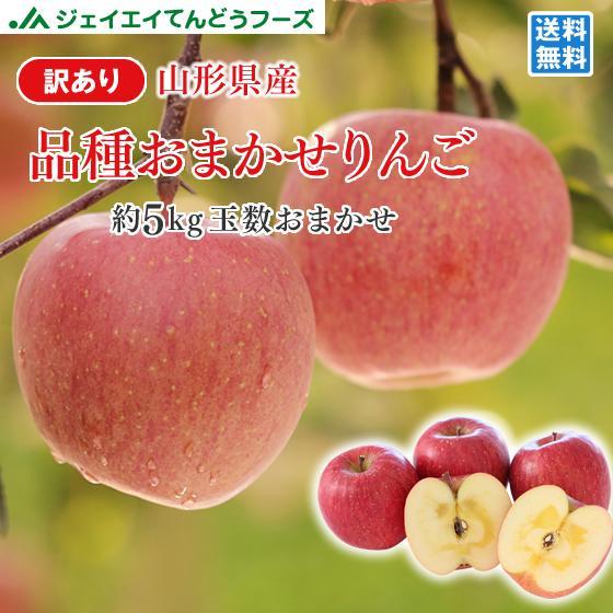 りんご 訳あり サンふじ リンゴ 約5kg ご自宅用