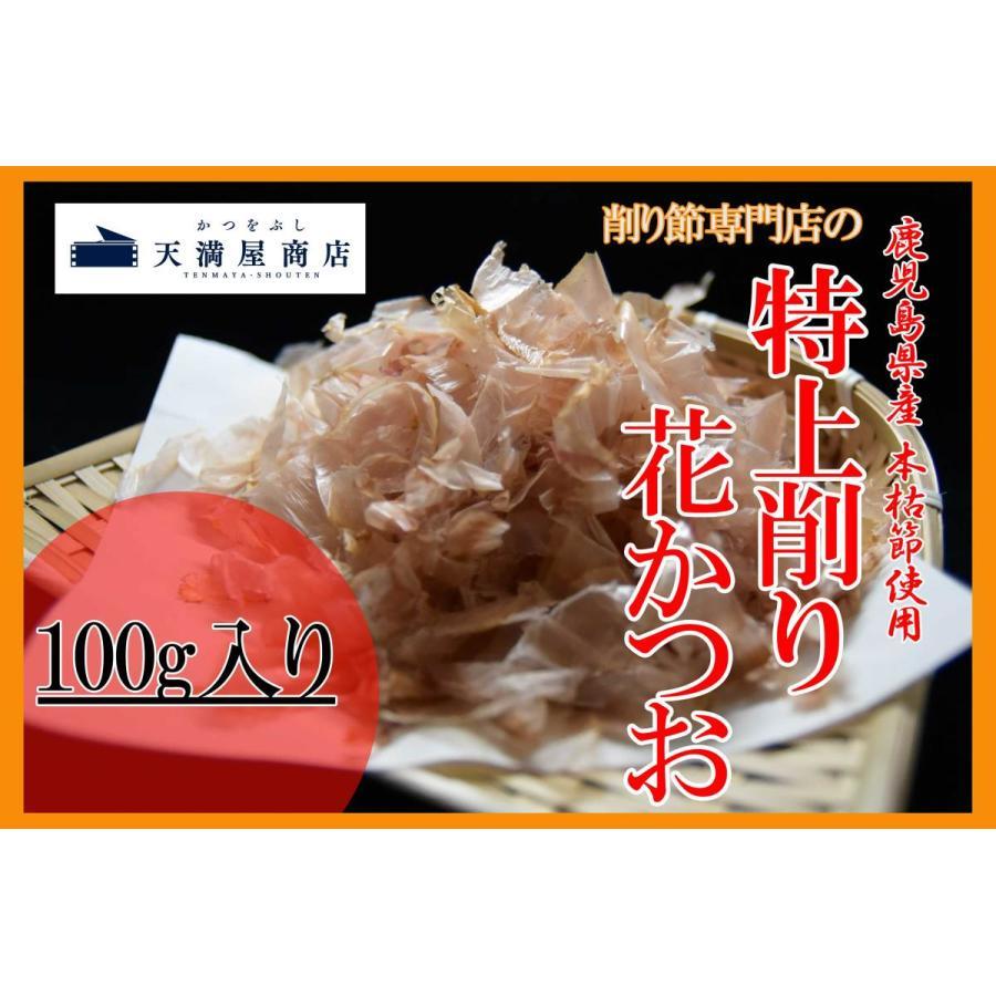 本枯節 枕崎産 削り節 特上削り花かつお100g 薄削り tenmaya-katsuo