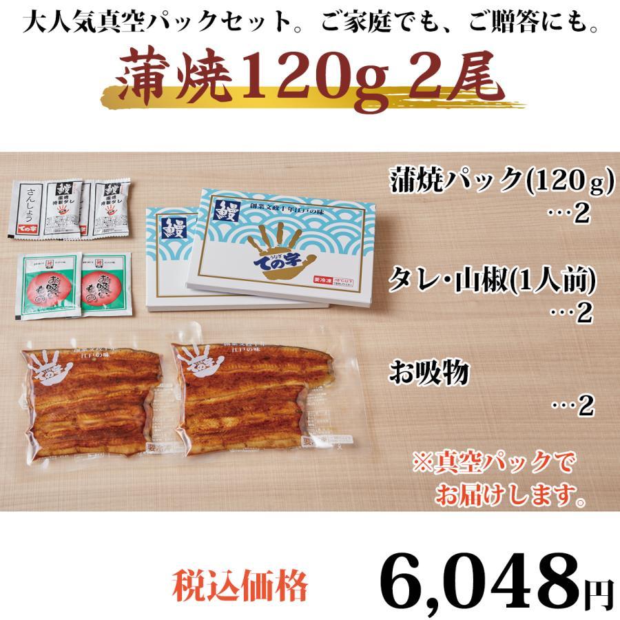 うなぎ 鰻 国産 蒲焼 ギフト プレゼント 120g×2セット ての字 化粧箱入り tenoji 02