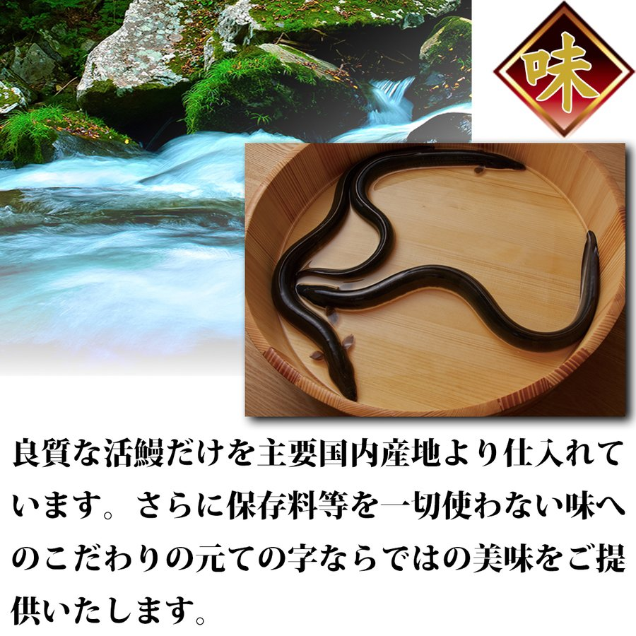 うなぎ 鰻 国産 蒲焼 ギフト プレゼント 120g×2セット ての字 化粧箱入り tenoji 07