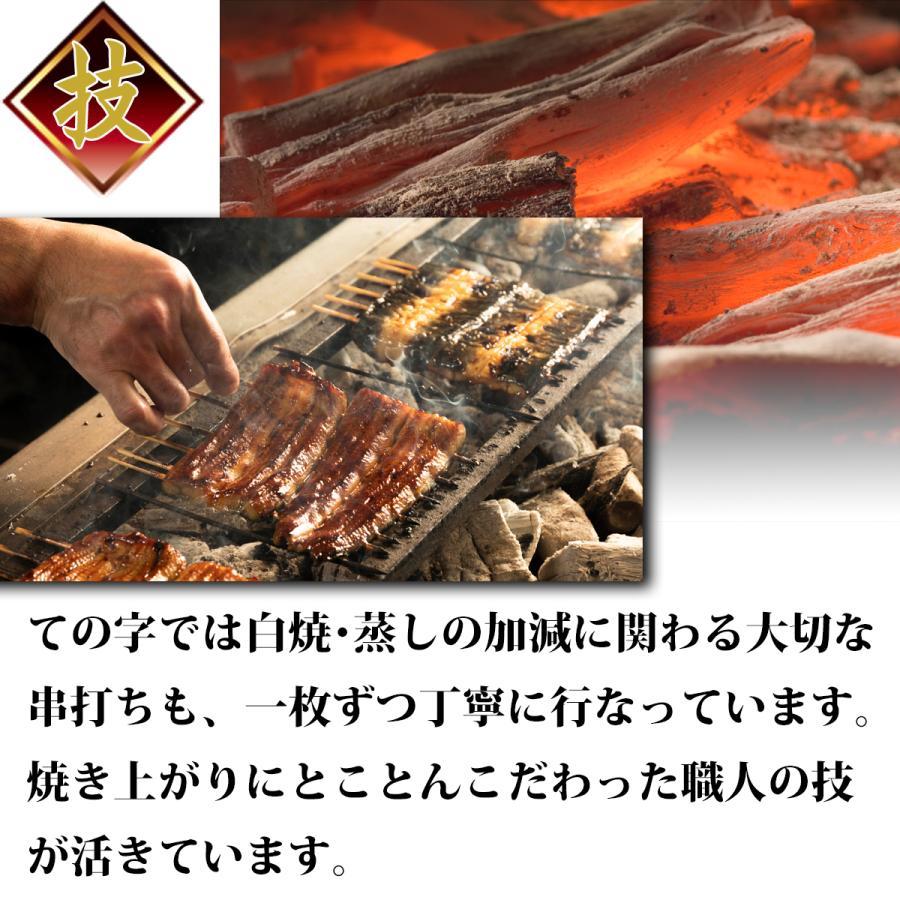 うなぎ 鰻 国産 蒲焼 ギフト プレゼント 120g×2セット ての字 化粧箱入り tenoji 08