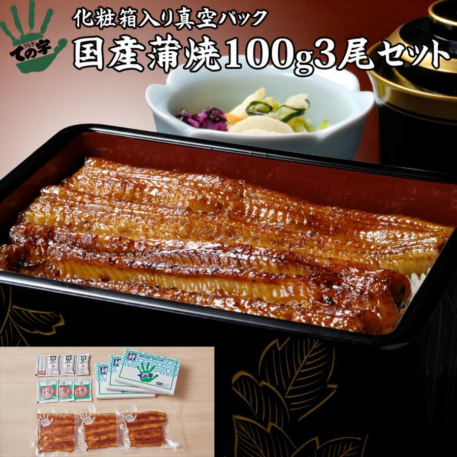 うなぎ 鰻 国産 蒲焼 ギフト プレゼント 100g×3セット ての字 化粧箱入り|tenoji