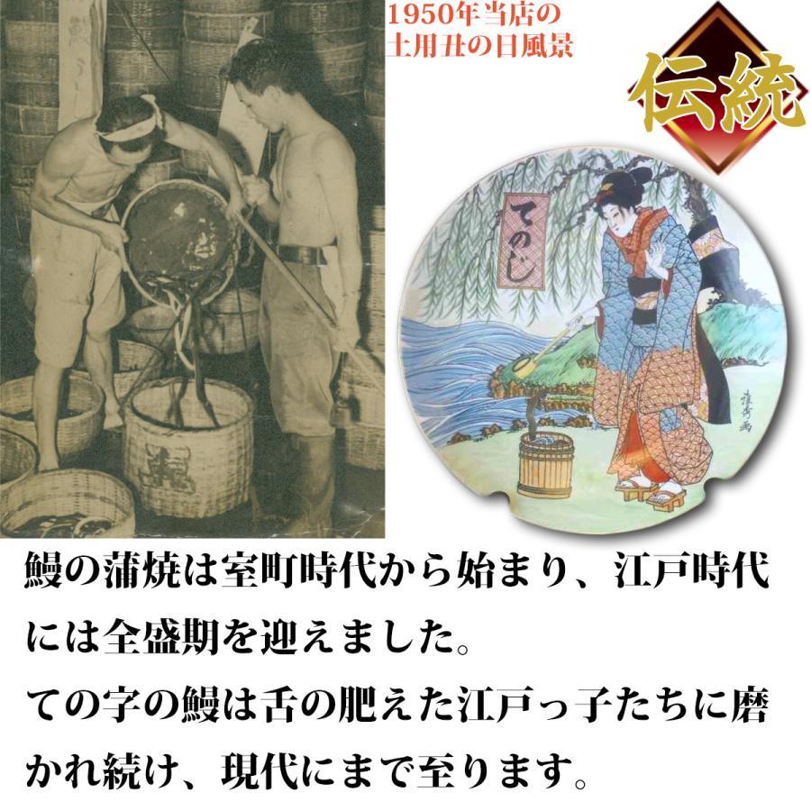 うなぎ 鰻 国産 蒲焼 ギフト プレゼント 100g×3セット ての字 化粧箱入り|tenoji|09