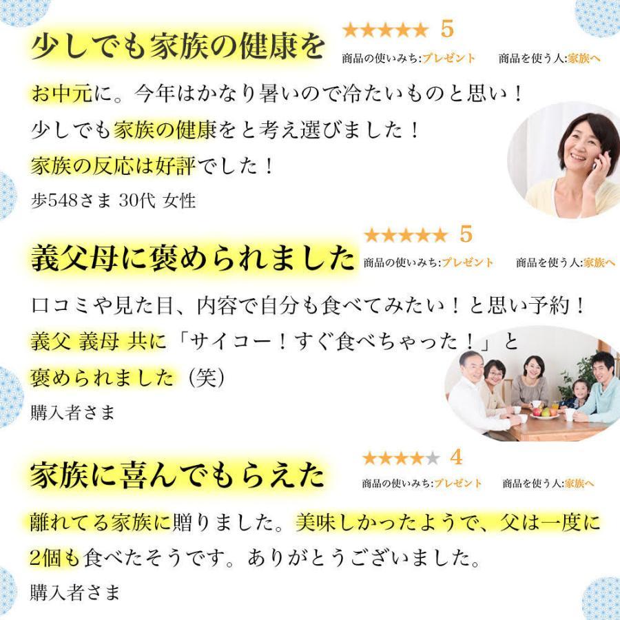 お中元 2021 アイス スイーツ 夏 ギフト 高級 御中元 誕生日プレゼント 内祝い 母 女性 男性 30代 40代 50代 60代 / ヘルシーフルーツジェラート8個入|tenshi-okurimono|14