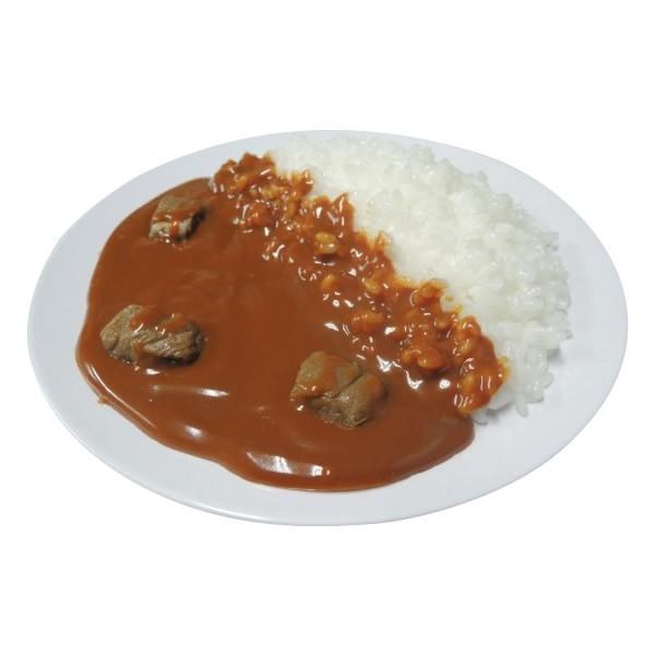 同梱・代引不可日本職人が作る 食品サンプル カレーライス IP-157