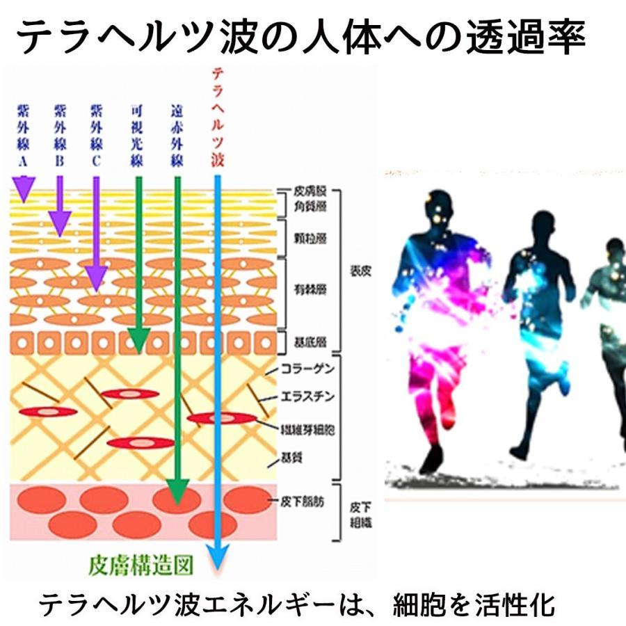 テラパワー エナジーボトル 振動機能水 200ml +30ml 血行促進 筋肉 リフレッシュ 筋肉痛 腰痛 肩こり|terapower|03