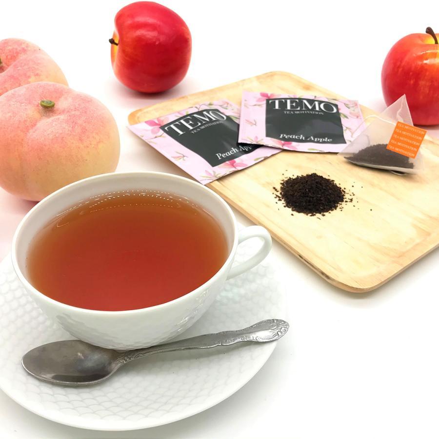 紅茶 ハロウィン ティーバッグ ギフト TEA MOTIVATION プレミアム 33包 手提げ袋付き ダージリン アッサム アールグレイ ももりんご 個包装 プレゼント|tetrafleur|05