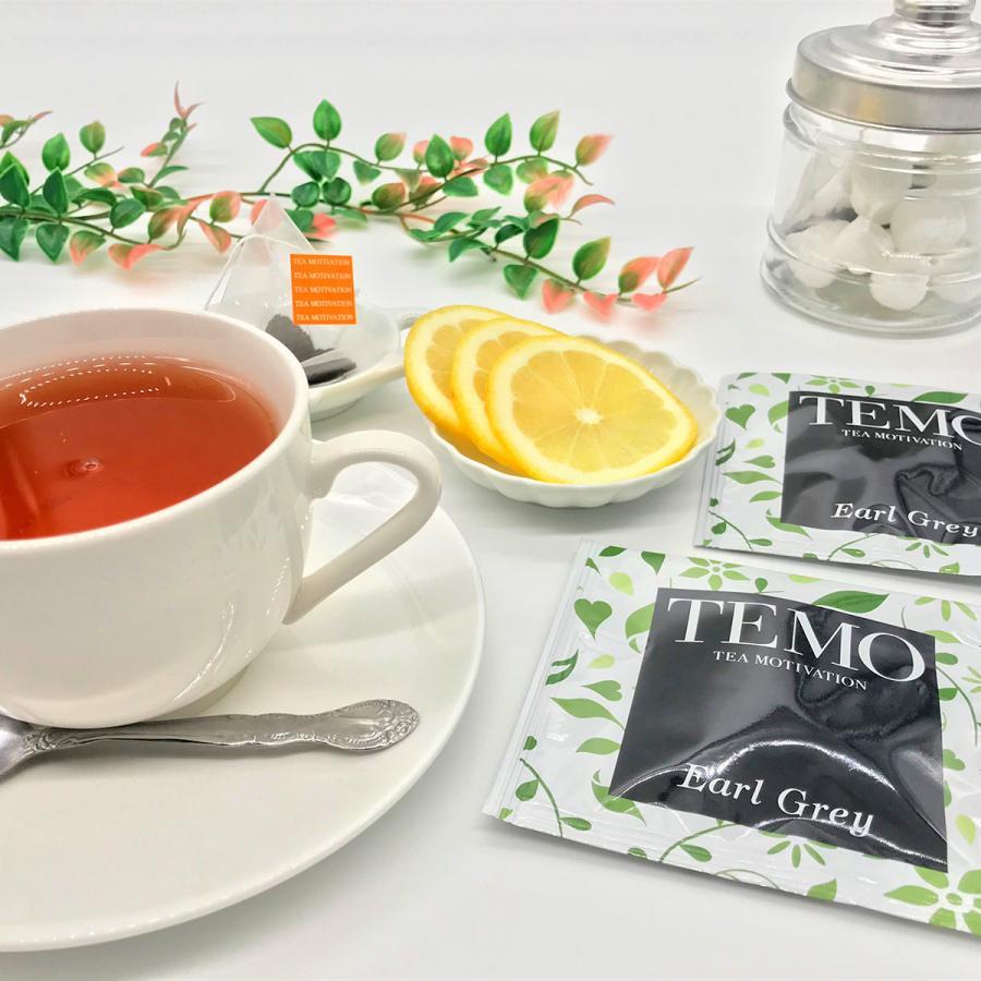 紅茶 ハロウィン ティーバッグ ギフト TEA MOTIVATION プレミアム 33包 手提げ袋付き ダージリン アッサム アールグレイ ももりんご 個包装 プレゼント|tetrafleur|06