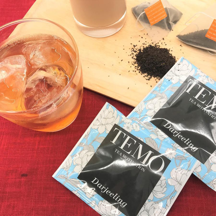 紅茶 ハロウィン ティーバッグ ギフト TEA MOTIVATION プレミアム 33包 手提げ袋付き ダージリン アッサム アールグレイ ももりんご 個包装 プレゼント|tetrafleur|08