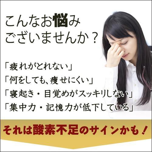 WOX(ウォックス)500ml×24本 thd 02