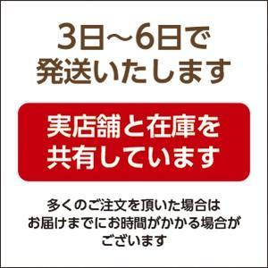 後藤商店 あっさり中辛すりカップ 600g まとめ買い(×6)|the-fuji-life|02