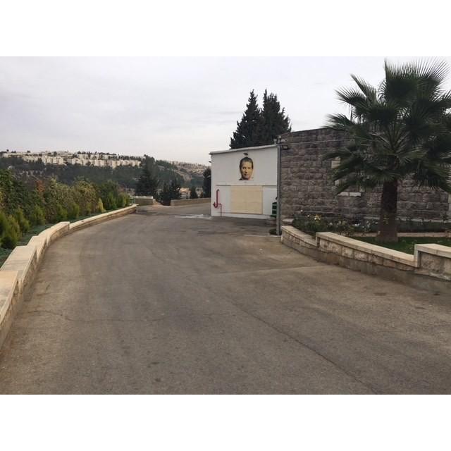 イスラエル・パレスチナ自治区の聖地ベツレヘムの土着品種ワイン・セット(オーガニック) 通常価格より約20%オフ! the-sacred-wine 05