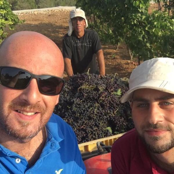 イスラエル・パレスチナ自治区の聖地ベツレヘムの土着品種ワイン・セット(オーガニック) 通常価格より約20%オフ! the-sacred-wine 07