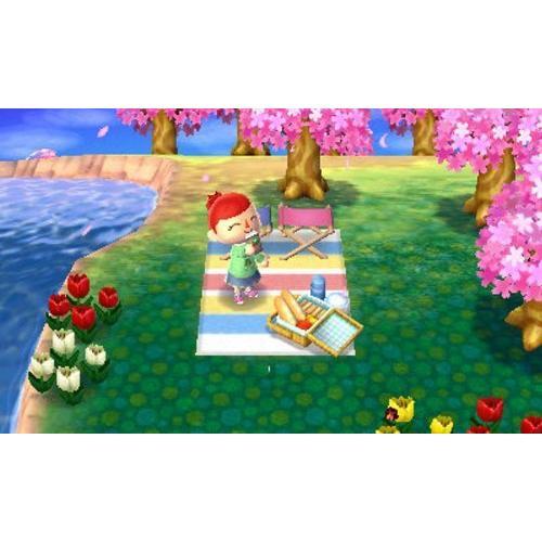 とびだせ どうぶつの森 - 3DS|tlinemarketing|04