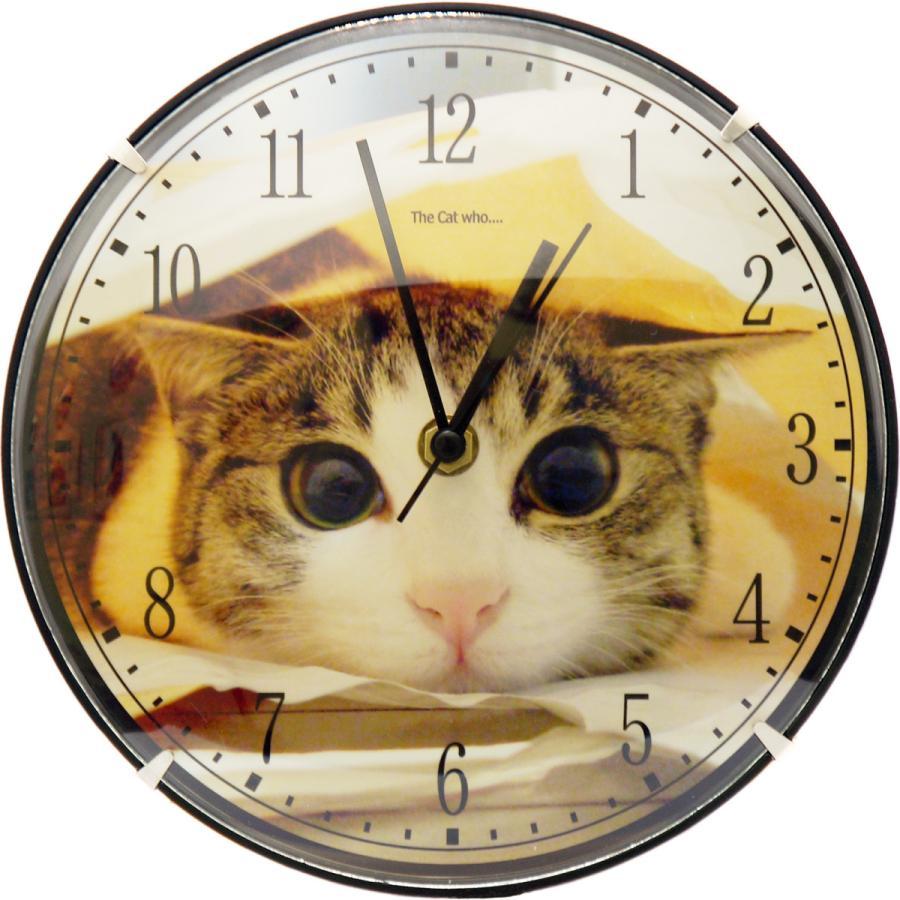 アートフォト壁掛け時計 The Cat who.... 子猫のジェリー (静音 静かな 写真壁時計 Art Photo Cats Clock  子供部屋 リビング とけい 送料無料) tm1