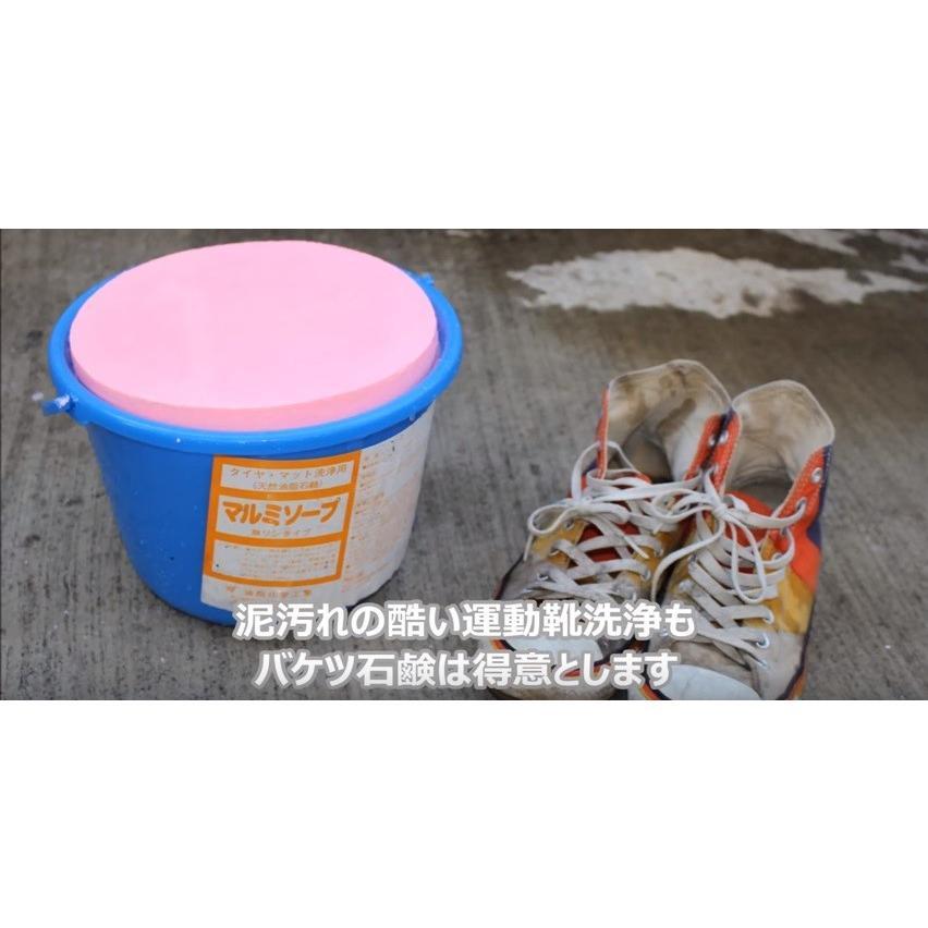 バケツ石鹸 6kg2個セット 自動車用 洗車用 洗車バケツ石鹸 カーシャンプー タイヤ洗浄|tnk-tokyo|05