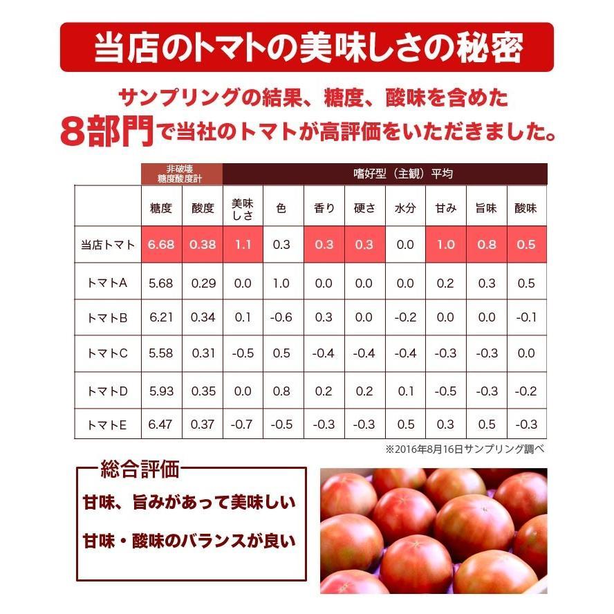 有機JAS トマトジュース  北海道 当麻 シシリアンルージュ(無塩) 500ml 祝い  お中元 ギフト お祝い 贈り物 トマト ジュース 取り寄せ ヘルシー|tohma-greenlife|07