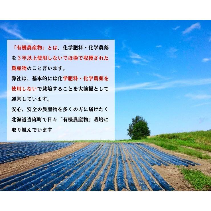 北海道 当麻 有機JAS 三升漬 ご飯のお供 ギフト 祝い  お中元 ギフト お祝い 贈り物 tohma-greenlife 04