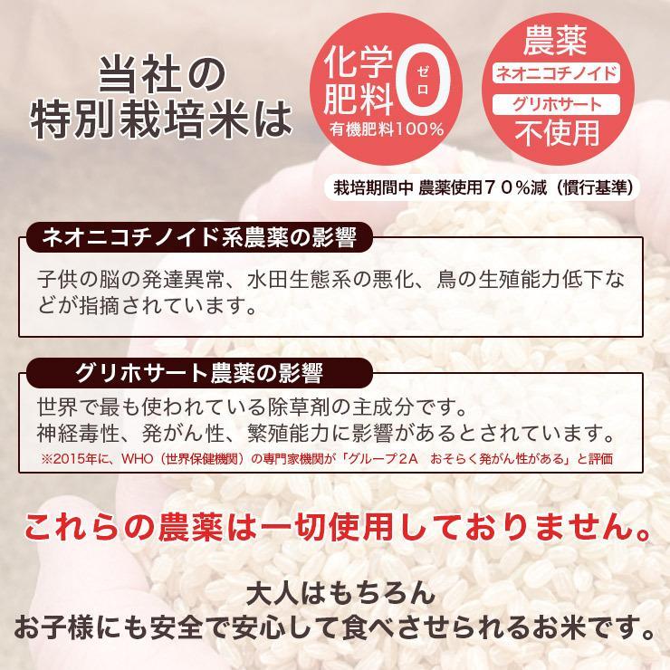 送料無料  令和2年産 北海道米 安心 安全 特別栽培米 お米 当麻  とっときスーパー(特別栽培 あやひめ 100%) 5kg 米 ギフト 祝い 贈り物 tohma-greenlife 02