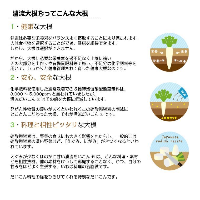 切り干し大根 太目 無添加 北海道十勝産 とかち切り干し清流大根50g×5 tokachi-berryfarm 03