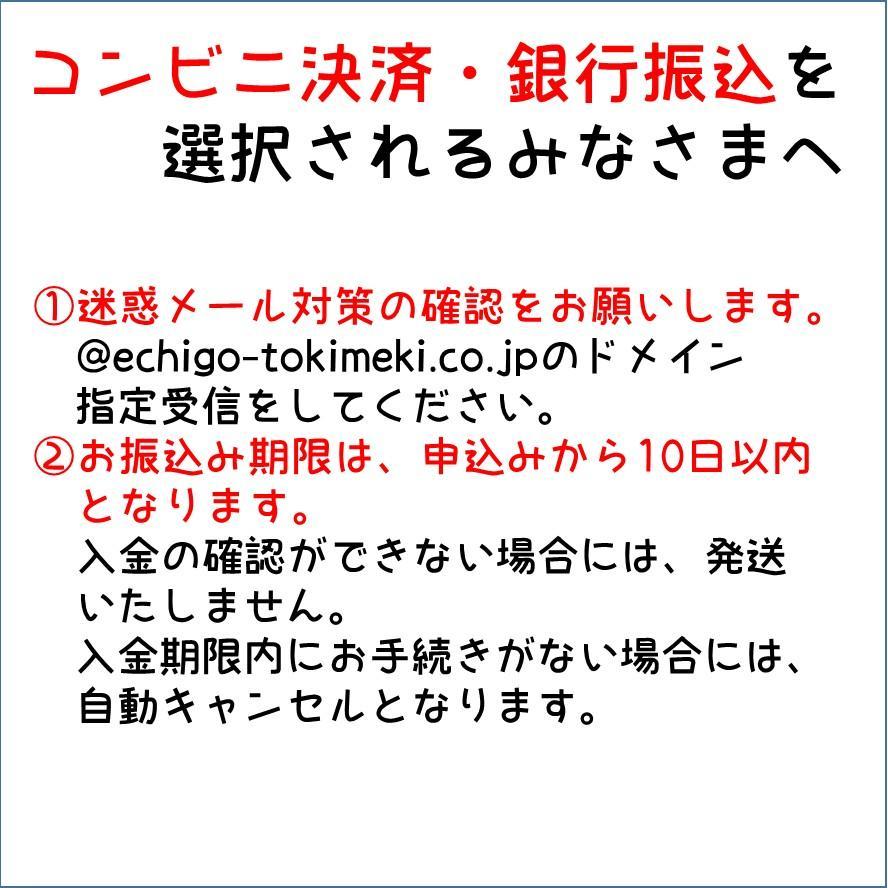 200g×4食 トキめく会社のトキてつカレー 長期常温保存OK |tokitetsu-official|05