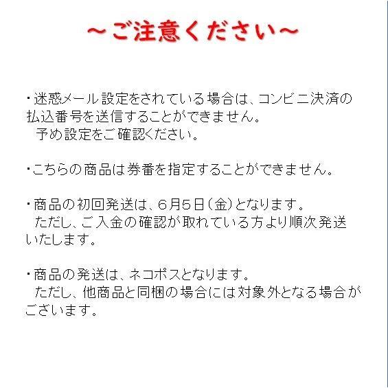 【記念乗車券セット】なつかしの特別急行列車シリーズ|tokitetsu-official|10