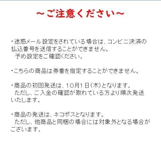 【記念乗車券セット】なつかしの特別急行列車シリーズ 5〜8 tokitetsu-official 09
