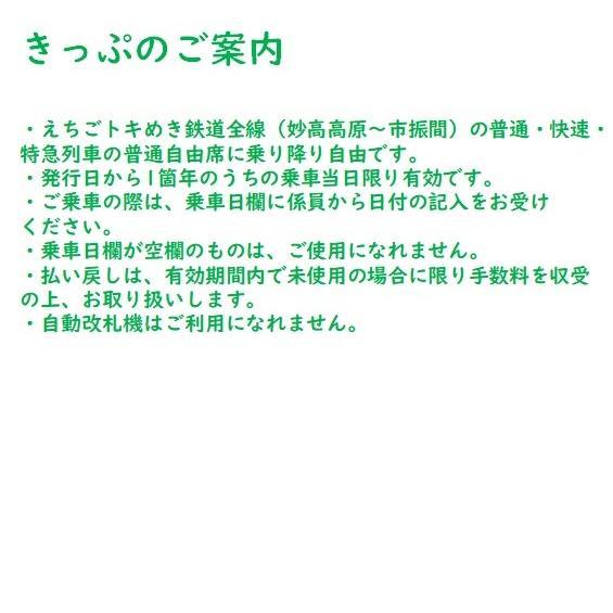 トキ鉄ツアーパス 大人 トワイライトエクスプレス再現車両設置記念 tokitetsu-official 03