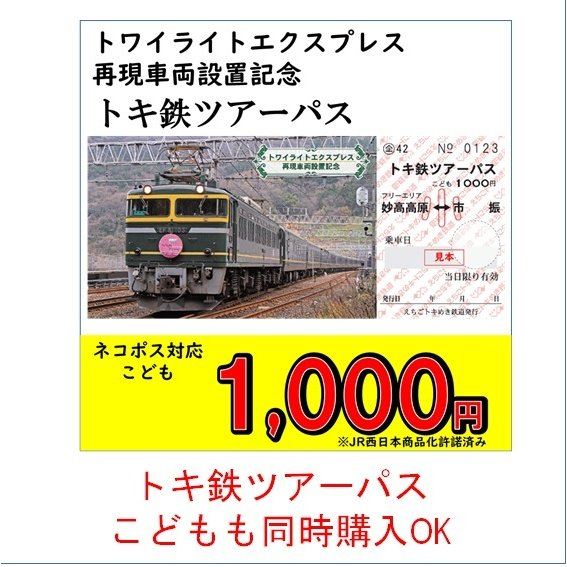 糸魚川市 マスク3枚セット 糸魚川駅開業5周年記念イベント特別商品|tokitetsu-official|11