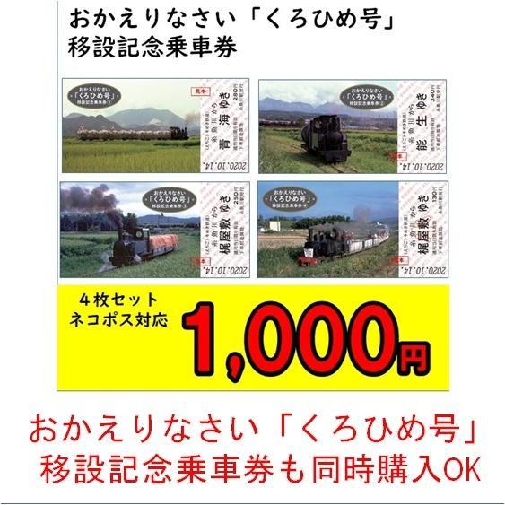 糸魚川市 マスク3枚セット 糸魚川駅開業5周年記念イベント特別商品|tokitetsu-official|14
