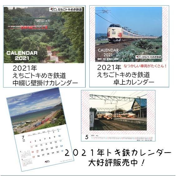 糸魚川市 マスク3枚セット 糸魚川駅開業5周年記念イベント特別商品|tokitetsu-official|15
