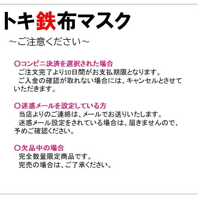 糸魚川市 マスク3枚セット 糸魚川駅開業5周年記念イベント特別商品|tokitetsu-official|07