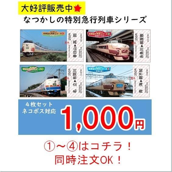 糸魚川市 マスク3枚セット 糸魚川駅開業5周年記念イベント特別商品|tokitetsu-official|08