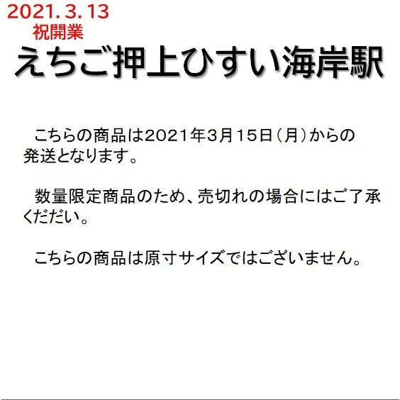 新駅開業 駅名標クリアファイル|tokitetsu-official|03