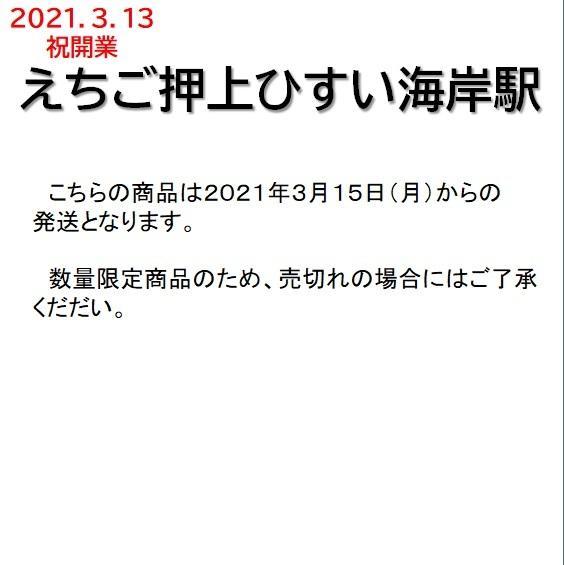 駅名標キーホルダー えちご押上ひすい海岸駅 tokitetsu-official 03
