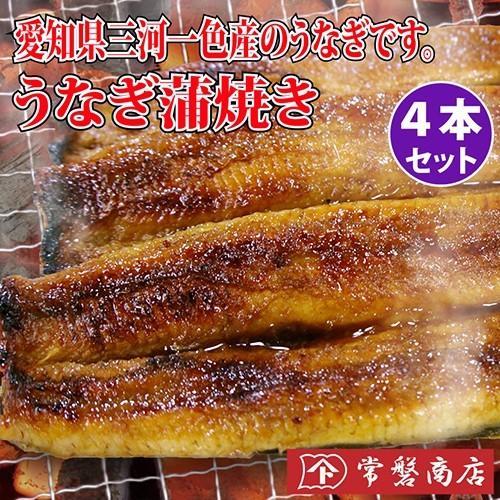 うなぎ蒲焼き 4本セット 鰻 tokiwashouten