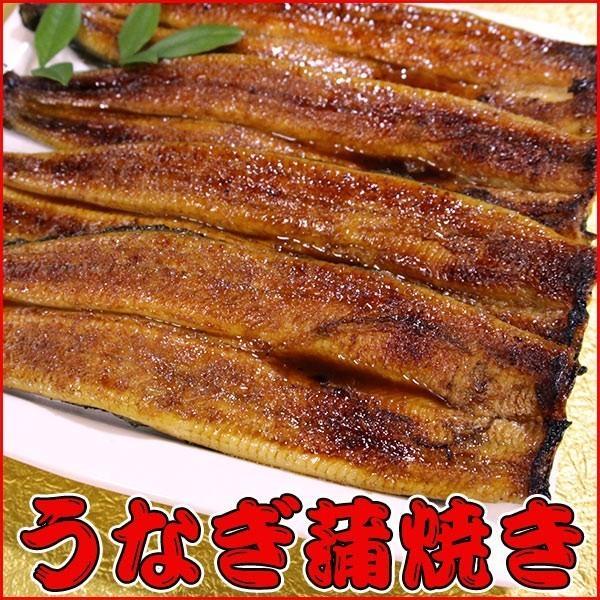 うなぎ蒲焼き 4本セット 鰻 tokiwashouten 03