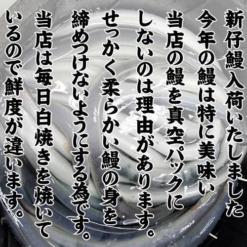 うなぎ白焼き (大)鰻|tokiwashouten|02