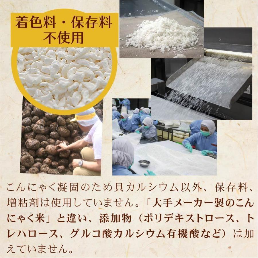 こんにゃく米 ゼンライス こんにゃくごはん 10kg 業務用 カロリー50%カット ダイエット こんにゃくライス 糖質制限 糖質オフ 無農薬 asu tokoroten 16
