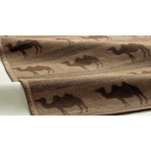 京都西川 ローズキャメル毛布 シングル 140×200cm CMH 3034