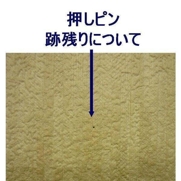 押しピン(10本入り) /吸音材用【小型配送】|tokyobouon|05