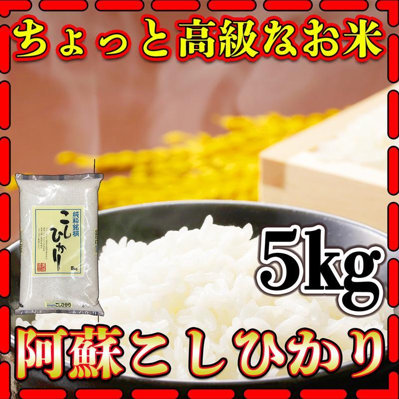 米 5kg 九州 熊本 阿蘇産 こしひかり 令和元年産 高級米 コシヒカリ 精白米 5kg1個 くまもとのお米