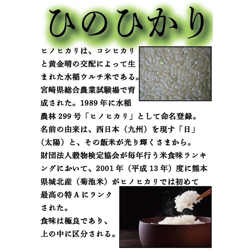 お米 米 450g 白米 送料無料 新米 九州 熊本県産 ひのひかり お試し米 約3合 令和3年産 くまもとのお米kuma-kome 富田商店 とみた商店|tomitasyoten|05