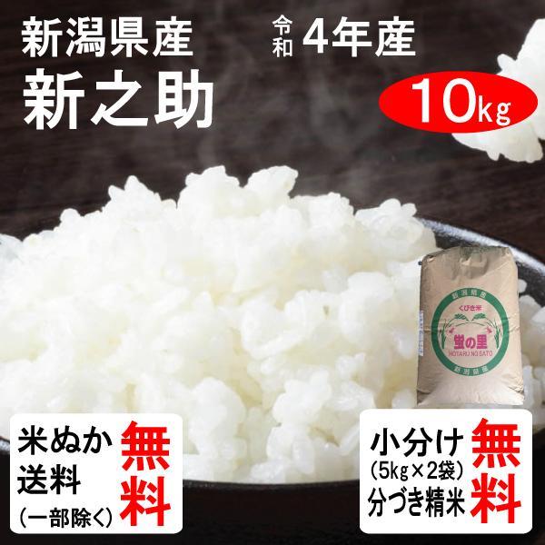 新米 10kg 送料無料 新潟県 新之助 1等玄米 クーポンで100円引き 10月中旬頃入荷・予約商品|tomoda