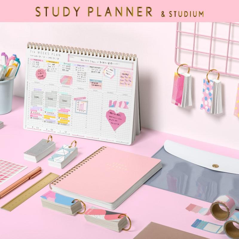 スタディプランナー ふせん STICKY ROLL STUDY PLANNER 手帳 勉強 計画 受験 韓国 ステーショナリー スケジュール かわいいおしゃれ ピンク (gsn)|tonary|08