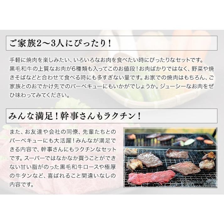 焼肉 セット 国産 国産牛 バーベキュー 肉 黒毛和牛 カルビ bbq 家族セット 600g|tonkai|04