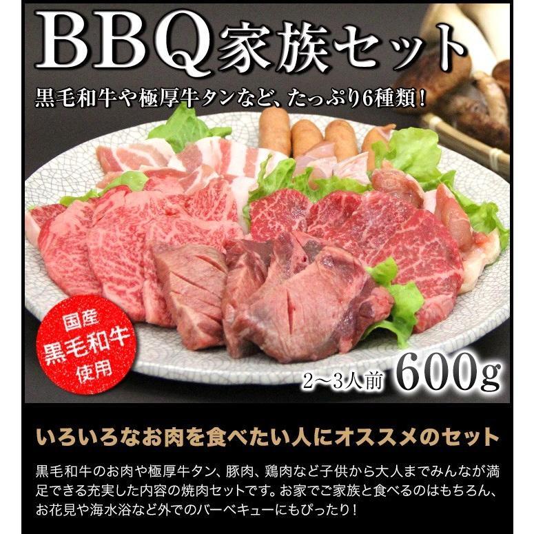 焼肉 セット 国産 国産牛 バーベキュー 肉 黒毛和牛 カルビ bbq 家族セット 600g|tonkai|05