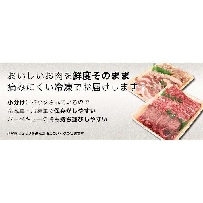 焼肉 セット 国産 国産牛 バーベキュー 肉 黒毛和牛 カルビ bbq 家族セット 600g|tonkai|06