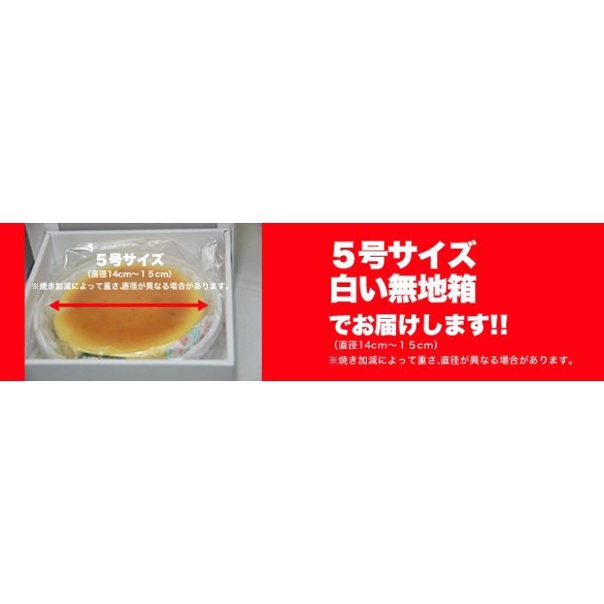 訳ありベイクドチーズケーキ 5号  わけあり ケーキ チーズケーキ .|toretate1ban|04