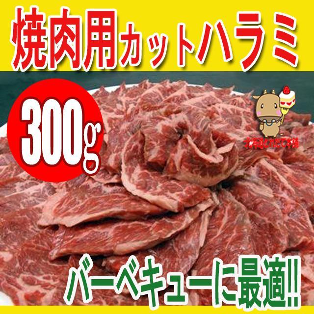 ハラミ メキシコ産他 300g  焼肉用 カット bbq バーベキュー お肉 肉 牛肉  はらみ さがり プレミアム|toretate1ban
